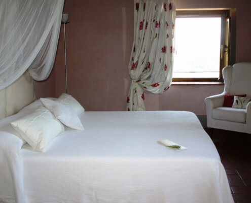 I Nespoli Rosa - Twin or Double room with private bathroom